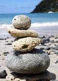 Korallenroter Schwerpunkt Lizenzfreie Stockfotografie