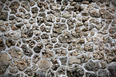 Korallenroter Stein stockfotos