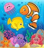 Korallenrotes Faunathemabild 9 Stockbild