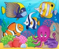 Korallenrotes Faunathemabild 7 Stockbild