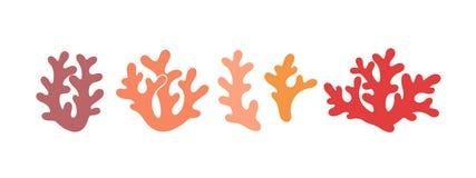 Korallenrotes Logo Lokalisierte Koralle auf weißem Hintergrund stockfotografie