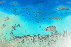 Korallenrotes Meer des großen Wallriffs Lizenzfreie Stockfotos
