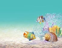 Korallenrotes Rif lizenzfreie stockfotografie