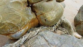 Korallensterbenam Bundelauf Koh Lanta - Thailand Worldtrip royalty-vrije stock afbeelding