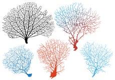 Koraller för havsfan, vektoruppsättning Arkivbild
