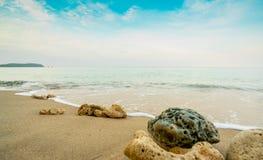 Koraller på sandstranden vid havet med blå himmel och vita moln Sommarsemester på tropiskt paradisstrandbegrepp krusning royaltyfria foton
