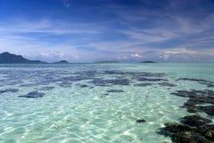 Korallrev i det tropiska havet Royaltyfri Fotografi