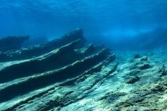 Korallrev i medelhavet arkivfoton