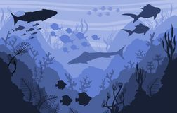 Korallrev och undervattens- djurliv, havsbakgrund royaltyfri illustrationer