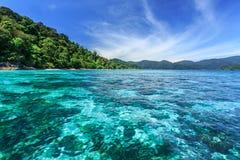 Korallrev under det kristallklara havet på den tropiska ön Arkivbild
