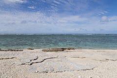 Korallstrand för dam Elliot Island fotografering för bildbyråer