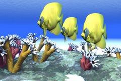 koralowi nastroje ilustracji