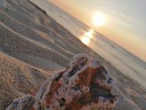 Koralowi piaski fotografia royalty free