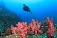koralowy nurek bada rafowego akwalung Obraz Stock
