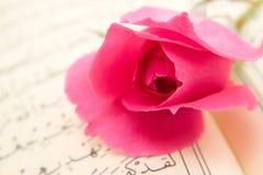 Koran and rose Stock Images
