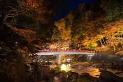Korankei在与照明设备展示的秋天在爱知,日本 库存图片