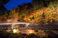 Korankei in autunno con la manifestazione di illuminazione in aichi, Giappone Fotografia Stock Libera da Diritti