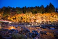 Korankei in autunno con la manifestazione di illuminazione in aichi, Giappone Immagine Stock Libera da Diritti