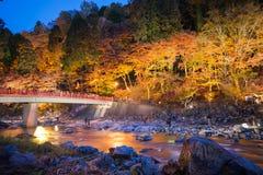 Korankei in autunno con la manifestazione di illuminazione in aichi, Giappone fotografie stock libere da diritti