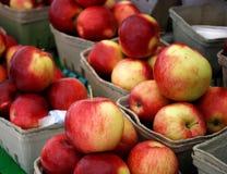 Korb der Äpfel Stockfotografie