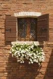 Korb der Blumen, die vom Fenster hängen. lizenzfreie stockbilder