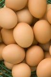 Korb der braunen Eier Stockbild