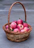 Korb der reifen Äpfel Lizenzfreie Stockbilder