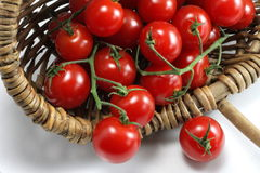 Korb der roten organischen Tomaten Lizenzfreies Stockbild