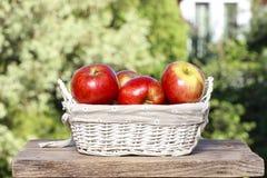 Korb der roten reifen Äpfel Stockfotos
