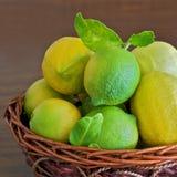 Korb der Zitronen Stockfoto