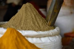 Korb des frischen rohen indischen Koriandergrundpulvers oder dhania, lizenzfreies stockfoto