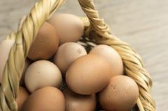 Korb füllte mit Eiern Lizenzfreies Stockbild