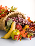 Korb gefüllt mit Fruchtdekorationen lizenzfreies stockbild