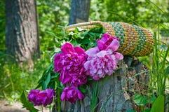 Korb mit Blumen Stockbilder