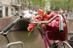 Korb mit Blumenstrauß der roten Tulpen auf einem Fahrrad Stockbild