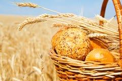 Korb mit Brot auf einem Weizengebiet Stockbilder