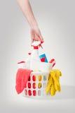 Korb mit celaning Produkten Stockbild
