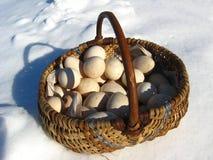 Korb mit den Eiern, die auf einem Schnee kosten Stockfoto