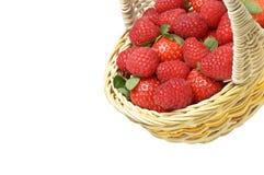 Korb mit den Erdbeeren und Himbeeren gekippt lizenzfreies stockfoto