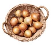 Korb mit den Zwiebeln getrennt auf Weiß Lizenzfreie Stockfotografie