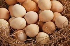 Korb mit Eiern Lizenzfreies Stockfoto