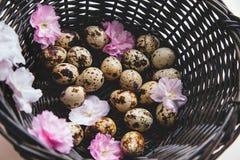 Korb mit Eiern und Blumen stockfoto