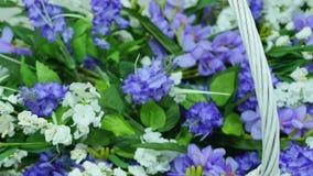 Korb mit einer Niederlassung der lila Blume stock video footage