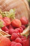 Korb mit Erdbeere und Himbeere Stockbild