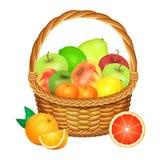 Korb mit Früchten auf Weiß Auch im corel abgehobenen Betrag stock abbildung