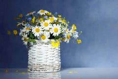 Korb mit Frühlingsblumen Stockfoto