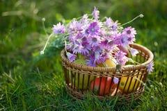 Korb mit Frucht und Blumen Stockfoto
