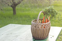 Korb mit Karotten Stockfoto