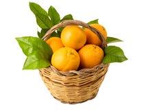 Korb mit Orangen Lizenzfreie Stockbilder