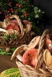 Korb mit Pilzen Lizenzfreies Stockbild